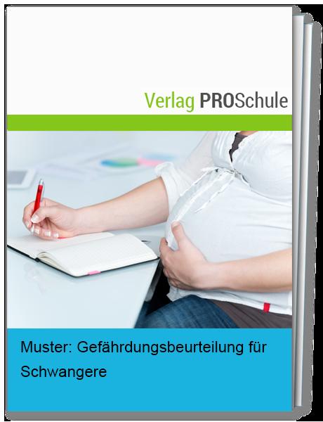 Merkblatt Arbeitsschutz Bei Schwangerschaft 0